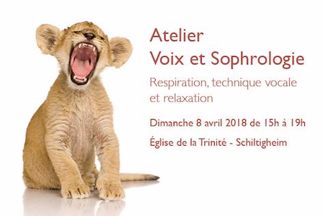 visuel_voix_sophro_site